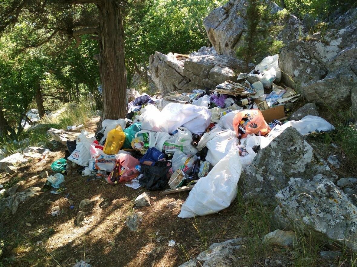 Фотофакт: Солнечная тропа в Ялте снова завалена мусором, фото-6