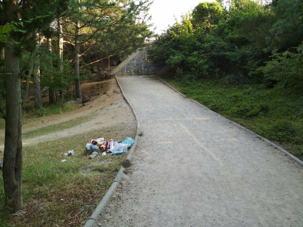 Фотофакт: Солнечная тропа в Ялте снова завалена мусором, фото-3
