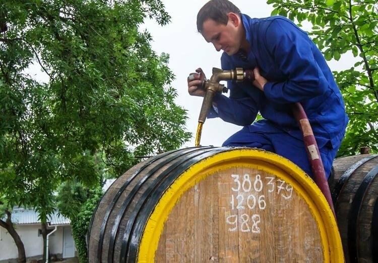 «Массандра» презентует новый винный тур к 125-летию старейшей отечественной мадеры, фото-2
