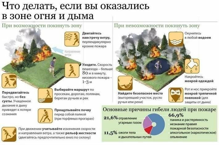 В Крыму и Ялте введен особый противопожарный режим, фото-1