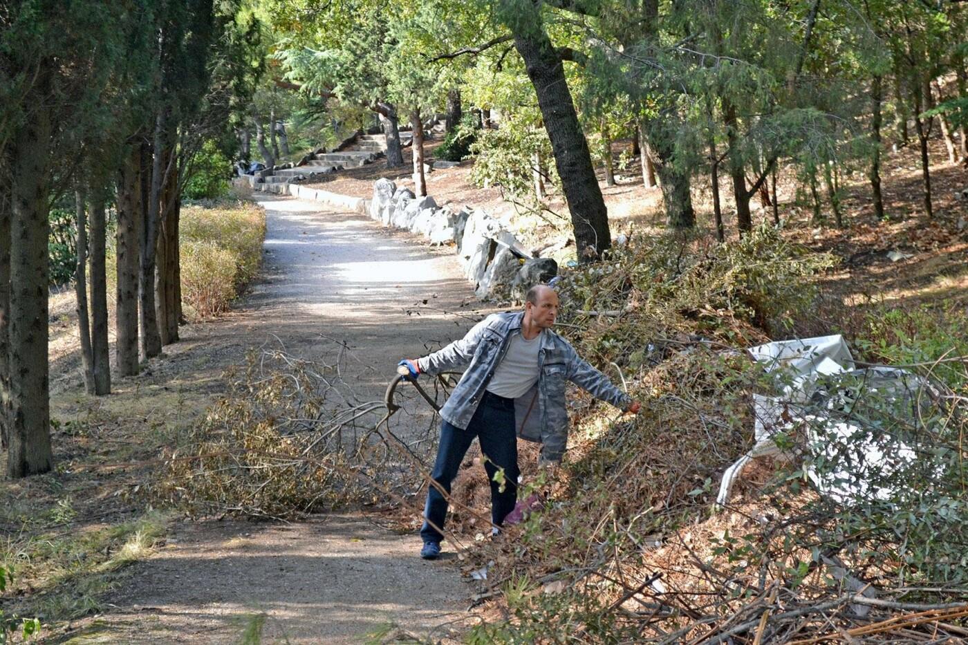 В Алупке в парке Годлевского прошел субботник, фото-1