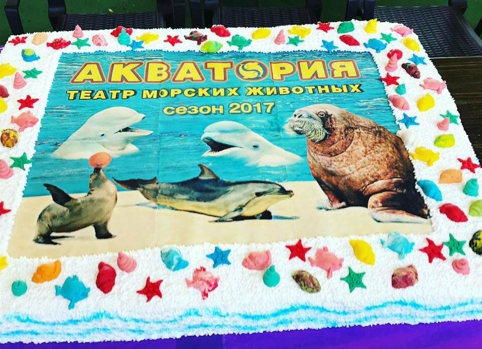 Ялтинский театр морских животных «Акватория» открыл зимний сезон , фото-5
