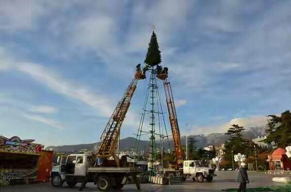 В Ялте началась установка городской елки , фото-1