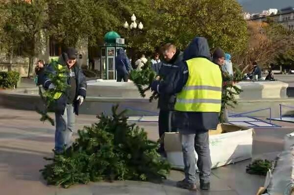 В Ялте началась установка городской елки , фото-3