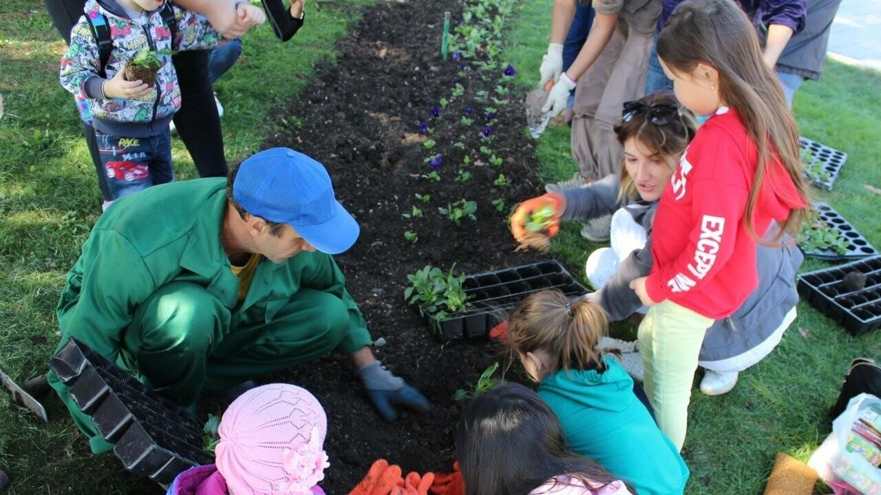 Ялтинцы приняли участие в высадке цветов на набережной города, фото-1