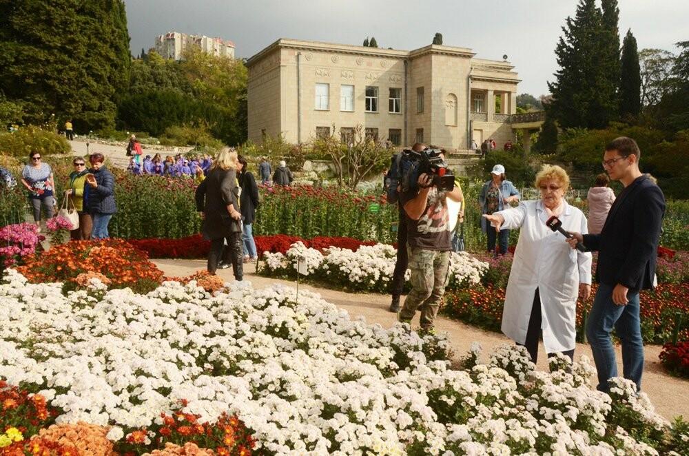 В Никитском саду открылась 65-я выставка хризантем, фото-1
