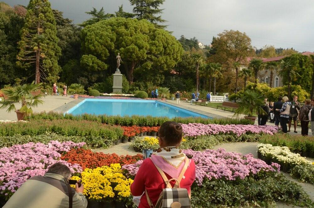 В Никитском саду открылась 65-я выставка хризантем, фото-2