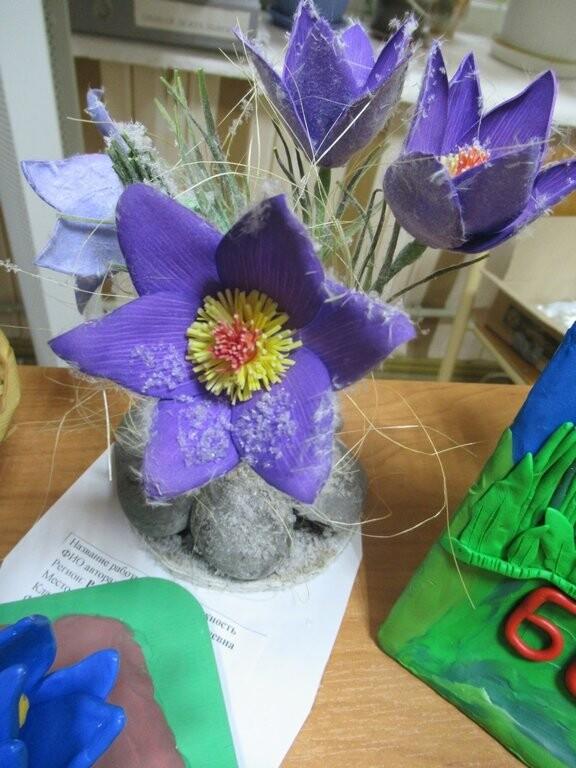 Школьники Ялты поучаствовали в экоакции «Первоцвет – 2019», фото-1