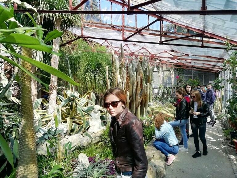 В Никитском саду проходят практику молодые ученые со всей России, фото-1