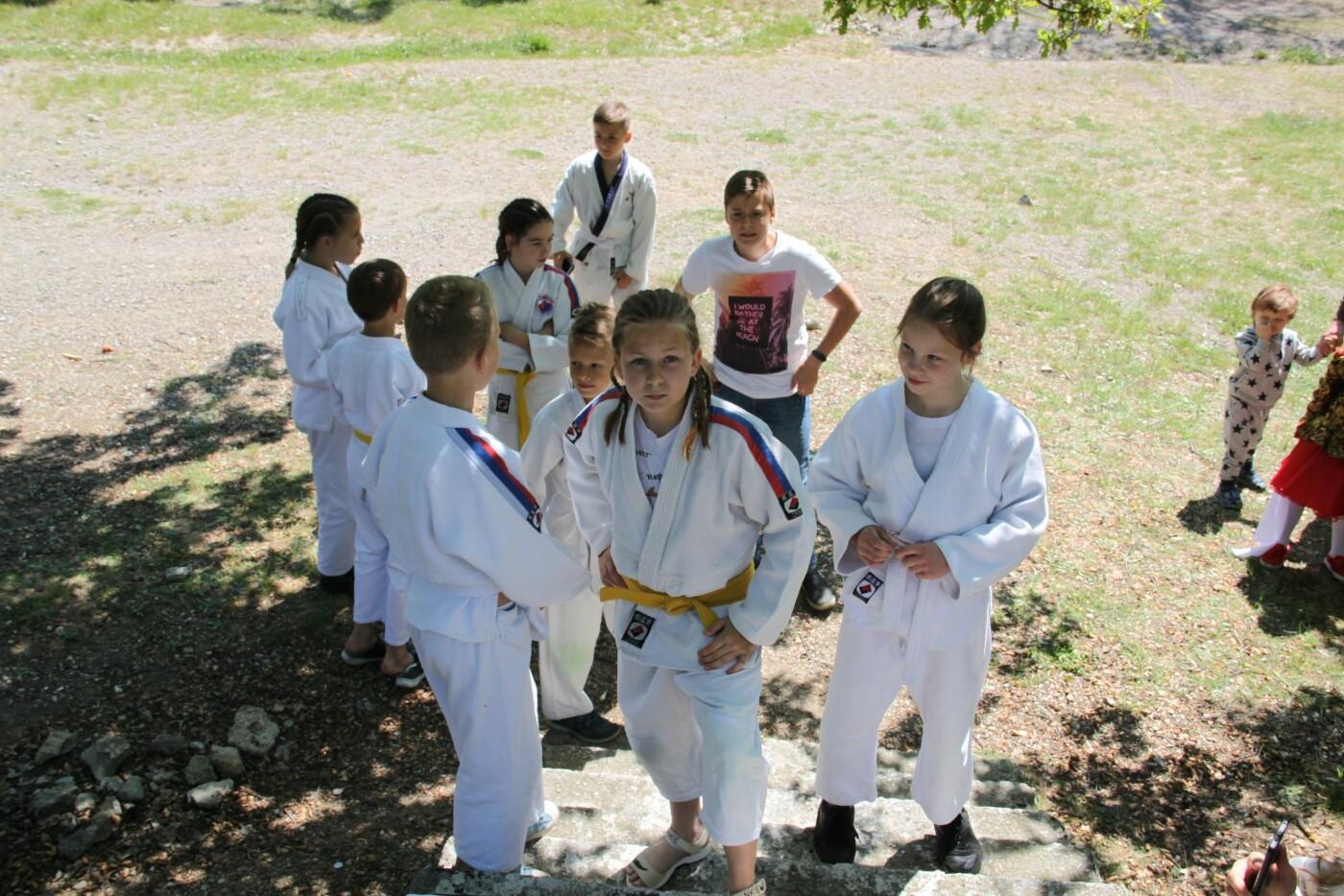 Маевка в Алупке прошла под знаком спорта и творчества , фото-5