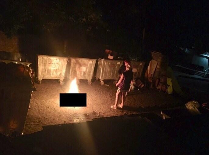 В Ялте две девушки заживо сожгли кота, фото-1