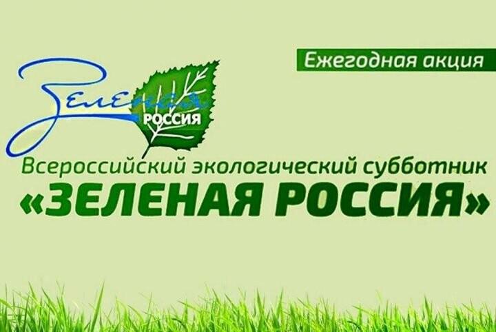 В субботу в Ялте пройдут сразу три экологические акции, фото-2