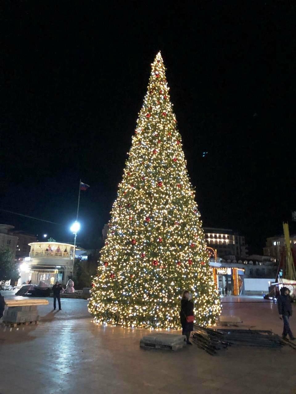 Топ-35 по высоте в России: 19 декабря в Ялте откроется главная новогодняя елка, фото-1