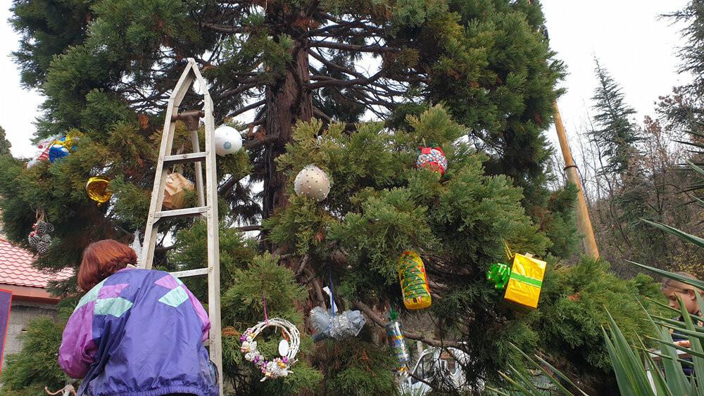 В Никитском ботаническом саду 340 игрушек украсили 11-метровый секвойядендрон, фото-5