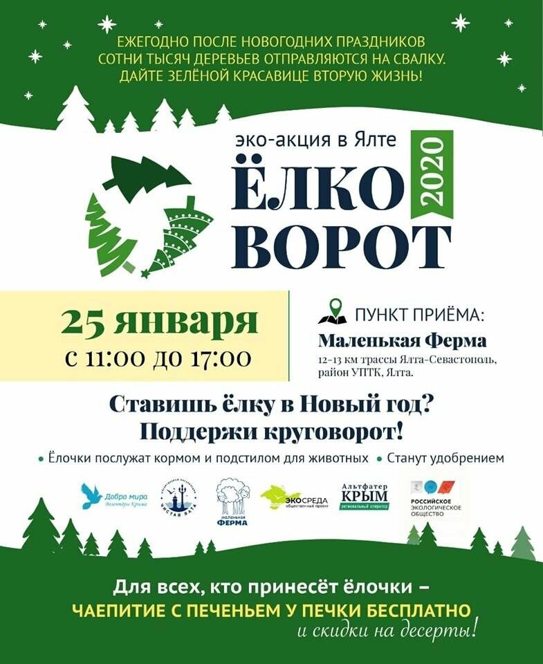 Елковорот в Ялте: где  завтра можно сдать елочку, фото-3