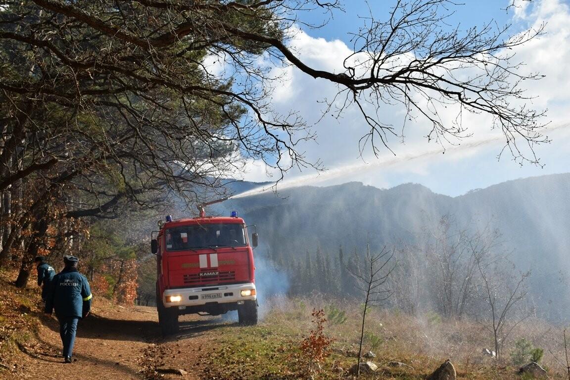 В Ялтинском заповеднике прошли учения по тушению лесного пожара, фото-2