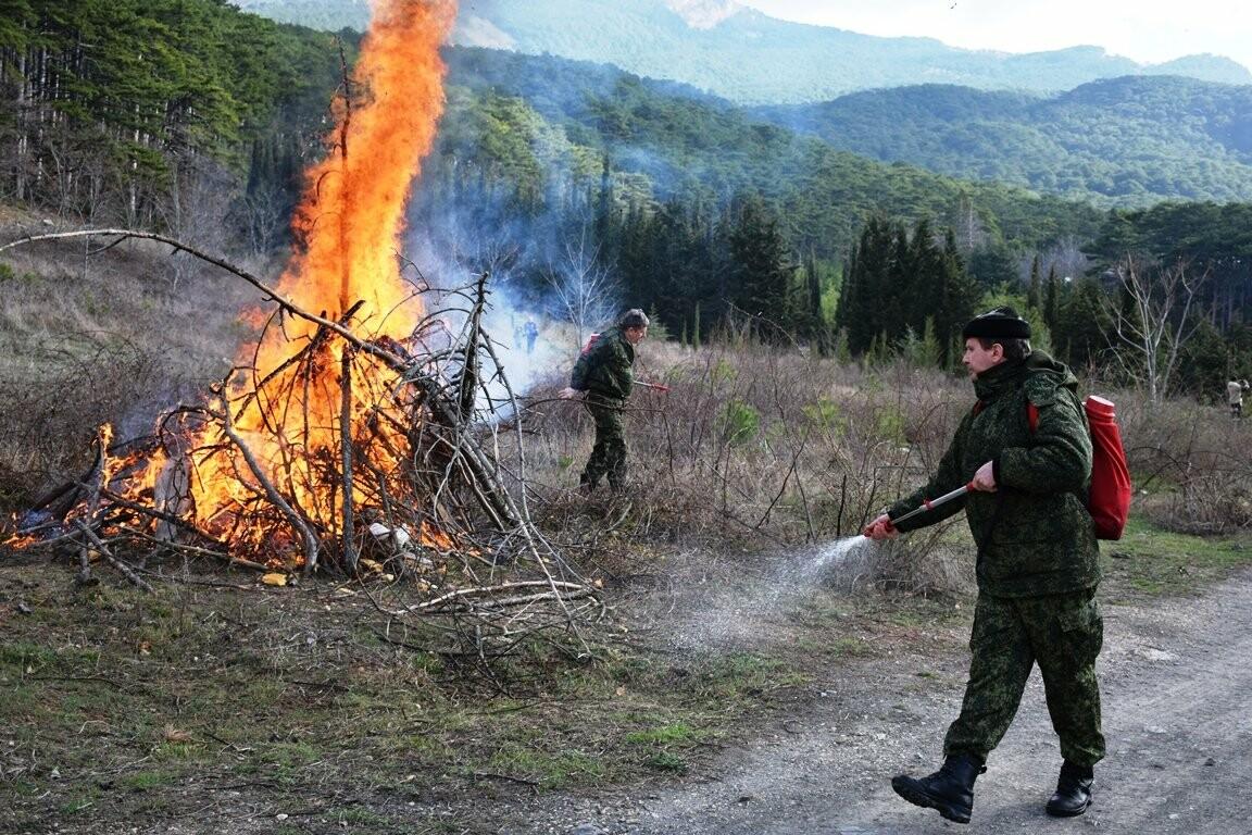 В Ялтинском заповеднике прошли учения по тушению лесного пожара, фото-1