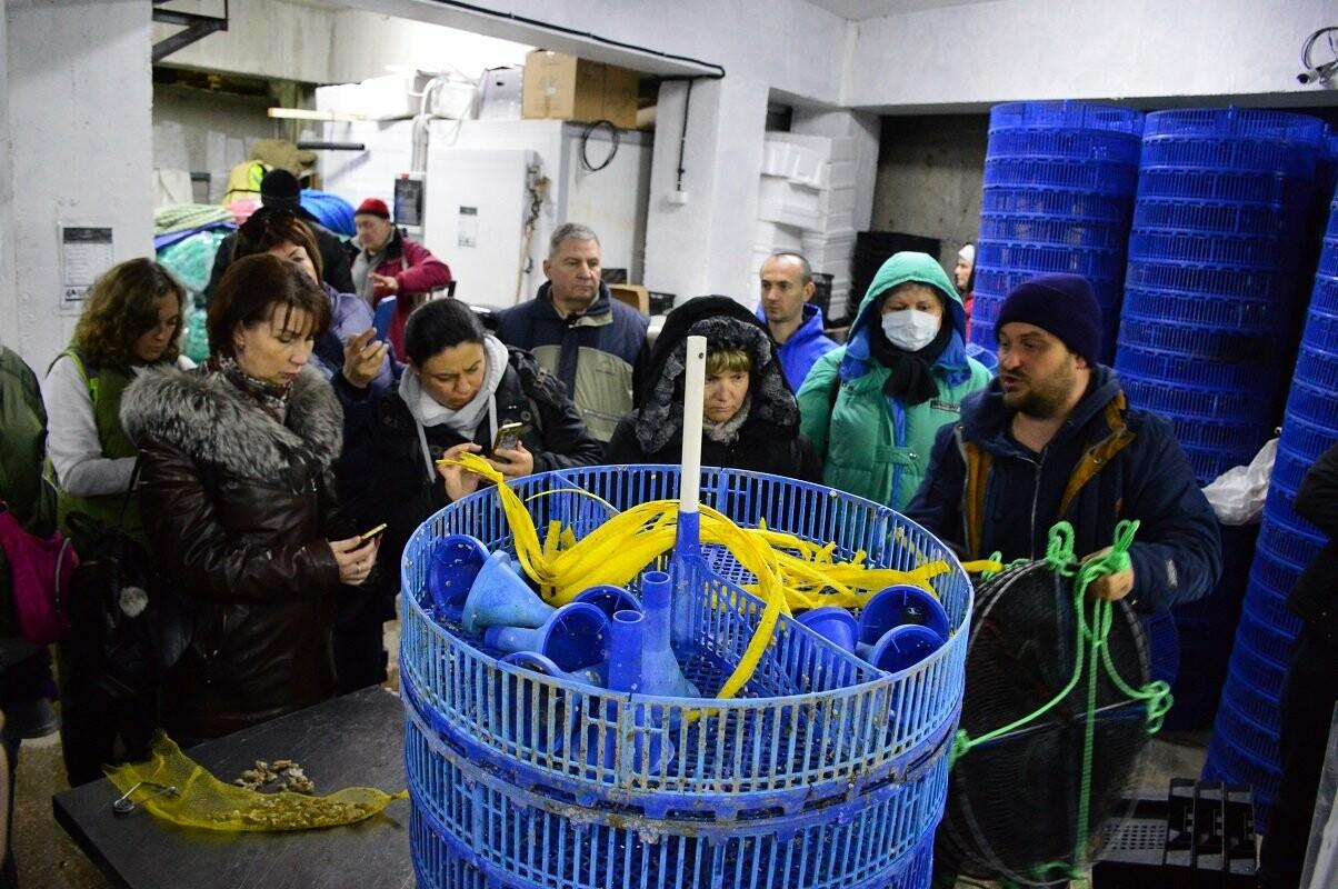 Нескучный понедельник: экскурсоводы Ялтинского региона побывали  на устричной ферме в бухте Ласпи, фото-4