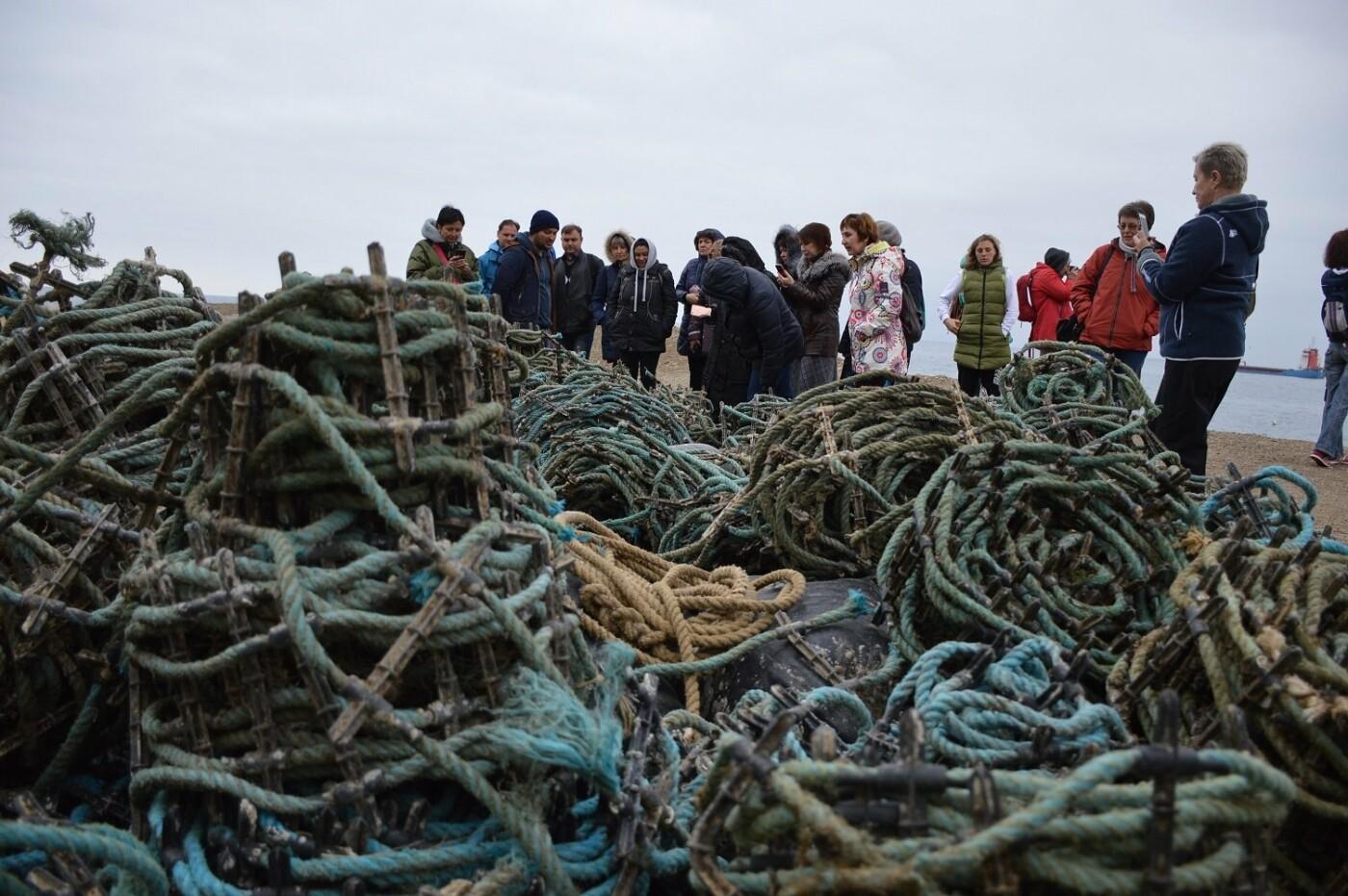 Нескучный понедельник: экскурсоводы Ялтинского региона побывали  на устричной ферме в бухте Ласпи, фото-5