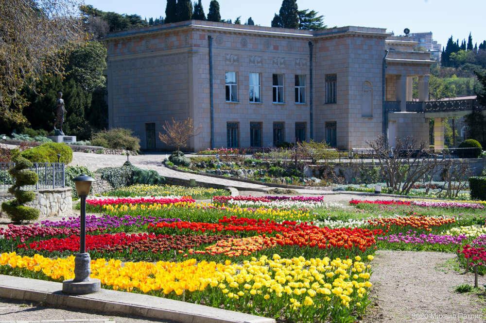 «Парад тюльпанов 2020» в Никитском саду подвел итоги, фото-1